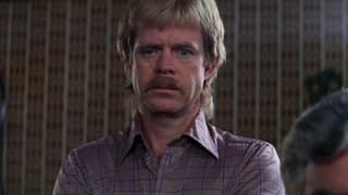 Boogie Nights on FREECABLE TV
